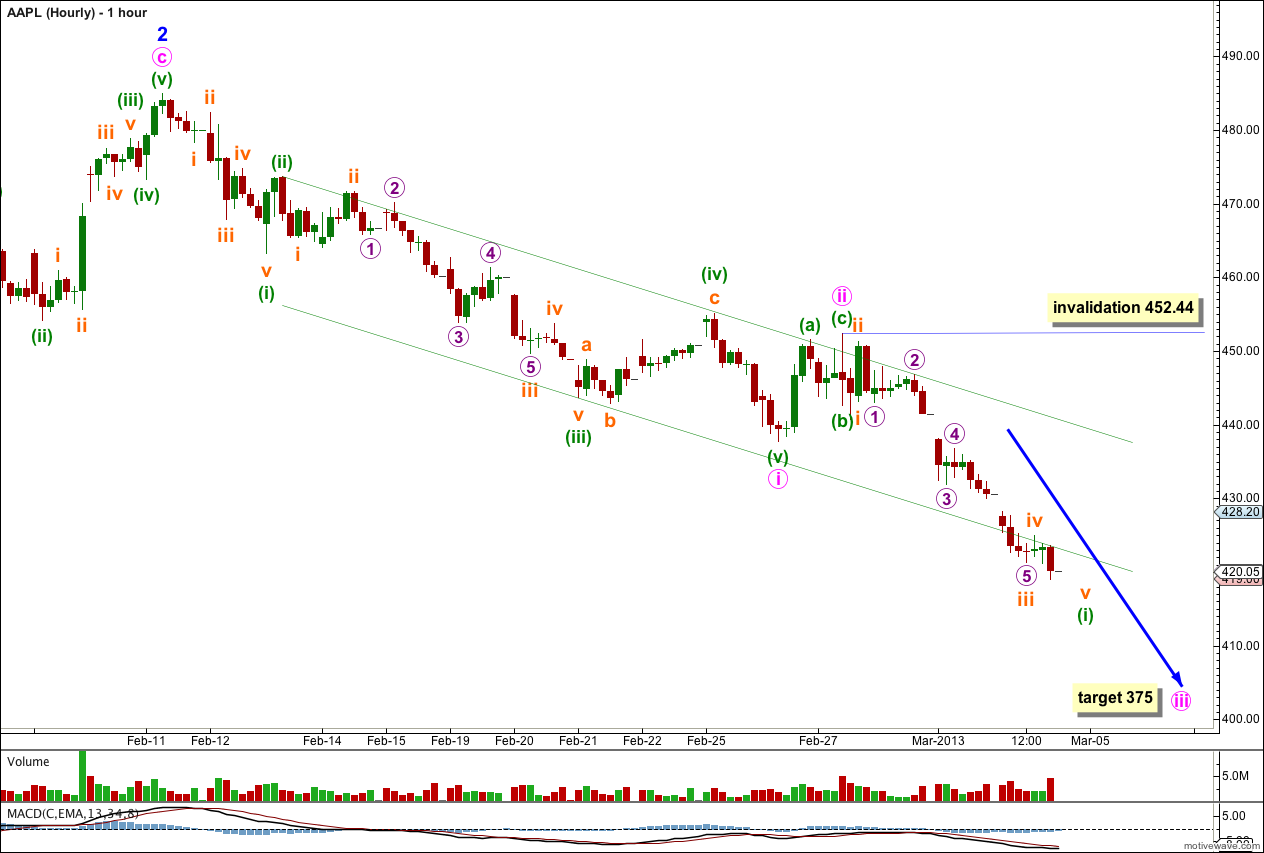 AAPL Elliott Wave Chart hourly 2013