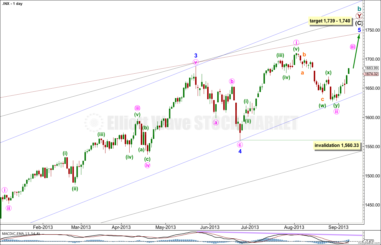 S&P 500 daily 2013