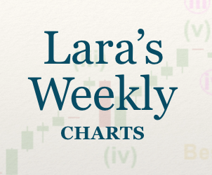 Lara's Weekly: Elliott Wave and Technical Analysis of S&P500 and Gold and US Oil | Charts – February 26, 2021